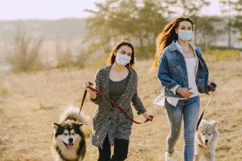LOS GEHT`S! Gassigehen wieder ab dem 1. Mai täglich von 9-11 Uhr